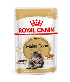 Maine Coon Adult Wet