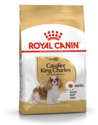 Ontdek onze unieke voeding voor de Cavalier King Charles