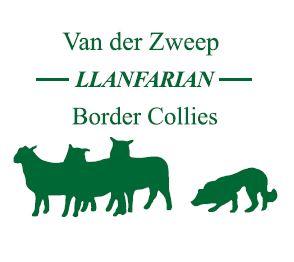 Van der Zweep - Llanfarian Border Collies