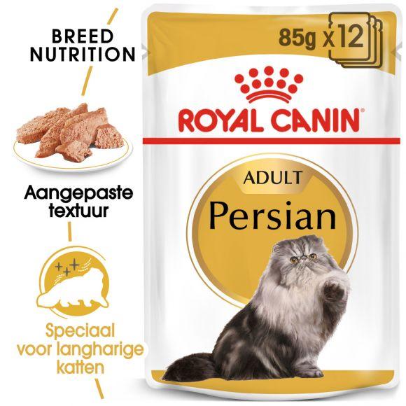 Persian Adult natvoer