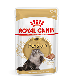 Persian Adult Wet