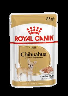 Chihuahua Adult natvoer