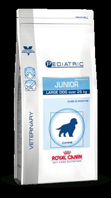 Large Dog Junior