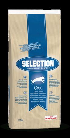 Selection High Quality Croc