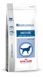 Large Dog Senior Consult Mature