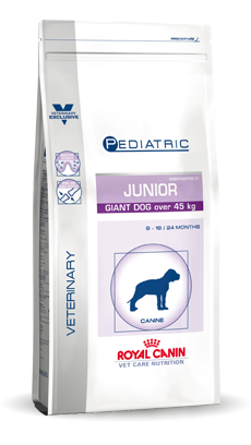 Giant Dog Junior