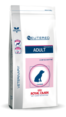 Medium Dog Neutered Adult