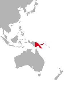 Nieuw Guinea
