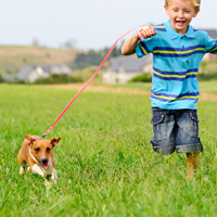 Hoe leer ik mijn hond met kinderen omgaan?