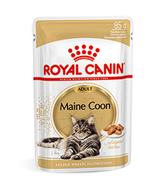 maine coon adult natvoer producten royal canin